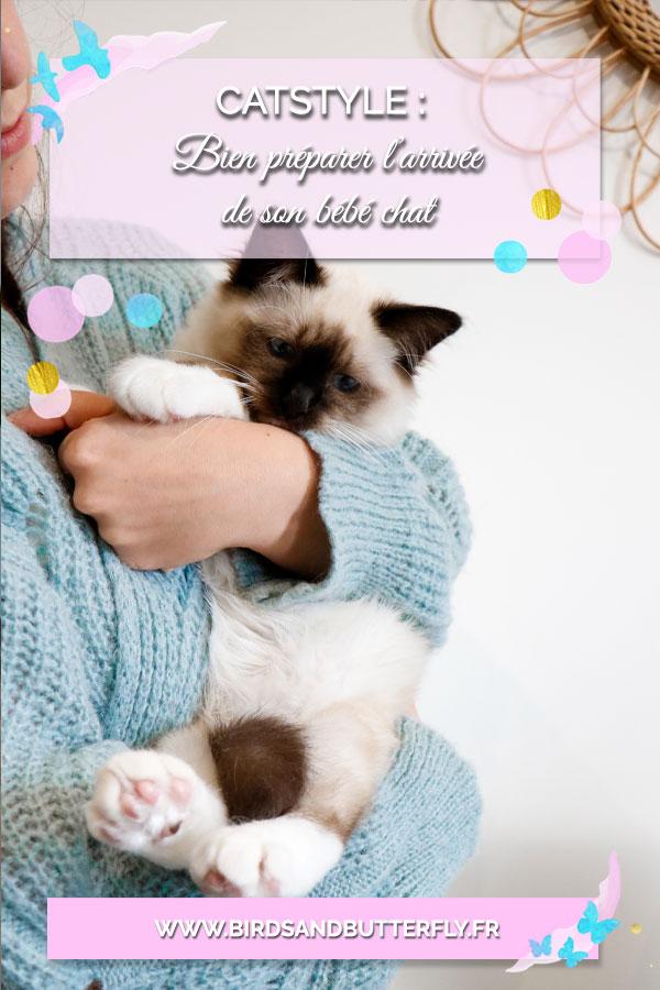 bien-préparer-l'arrivée-de-son-chat