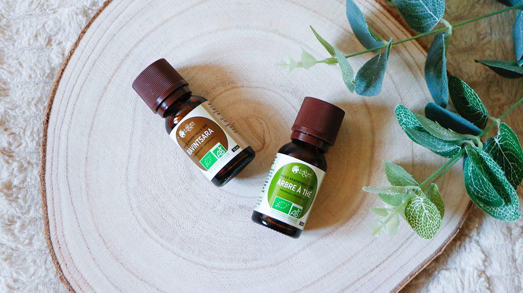 huiles essentielles ravintsara arbre à thé